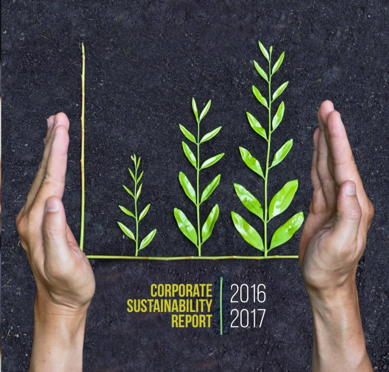 CORPORATE SUSTAINABILITY REPORT 2016-2017